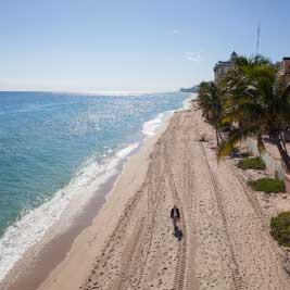 proyectos en Miami